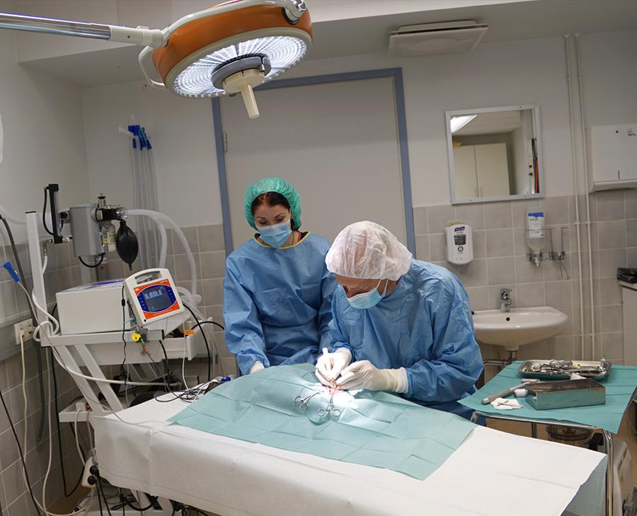 ORTOPEDISET-LEIKKAUKSET-ONTUMATUTKIMUKSET-elainlääkäri-Heinola