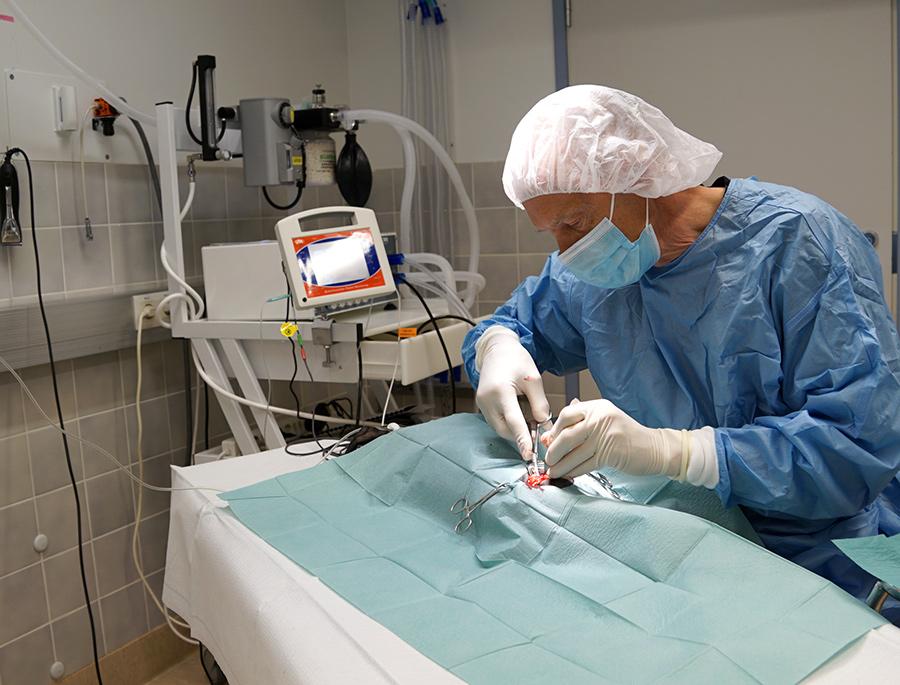 kirurgia-elainlääkäri-heinola-tuulivet